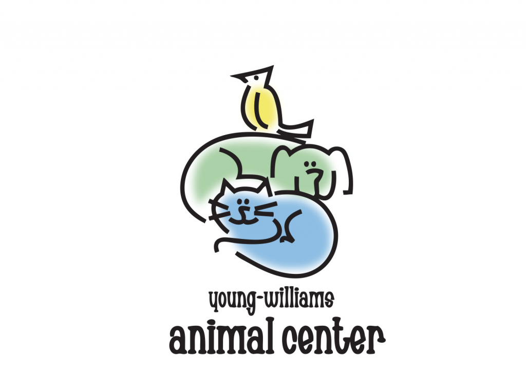 youngwilliams
